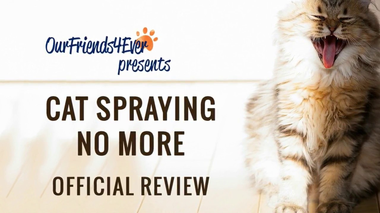 Cat-Spraying-No-More-Review.jpg